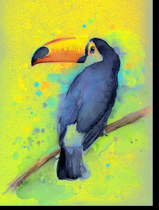 graphic royalty free Resultado de imagem para toucan watercolor