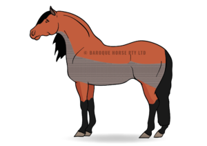 freeuse Horse clipping diagram. Bib clip low trace
