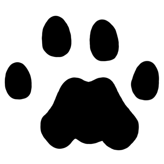 vector black and white library Mountain Lion Tracks