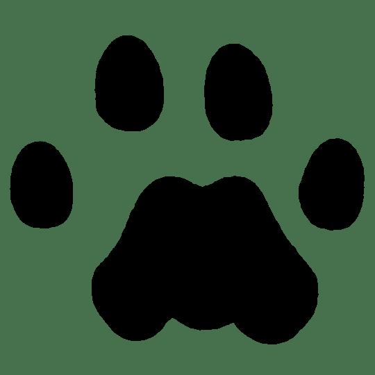 jpg royalty free library Tracks clipart dog tracks. Mountain lion naturetracking