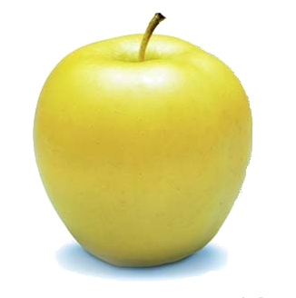 jpg freeuse stock The Golden Delicious