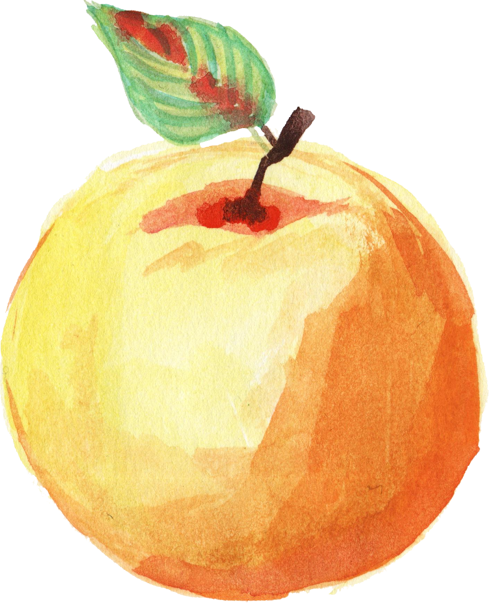 clip library download transparent watercolours fruit #106973735