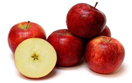 picture free Apple Varietals