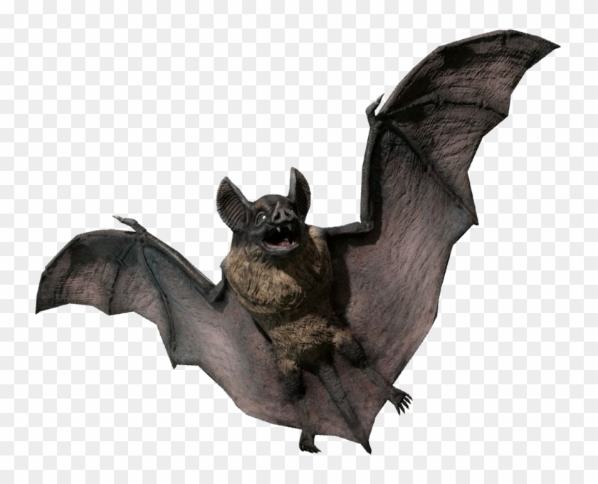 svg freeuse Vampire transparent bat. Statue png d model