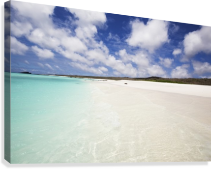 png free White sand beach with crystal clear turquoise water and blue sky
