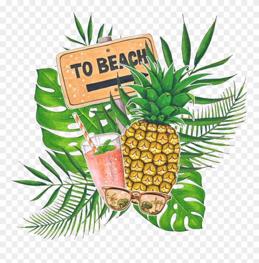 transparent stock Beach transparent fruit. Hand painted tropical drink
