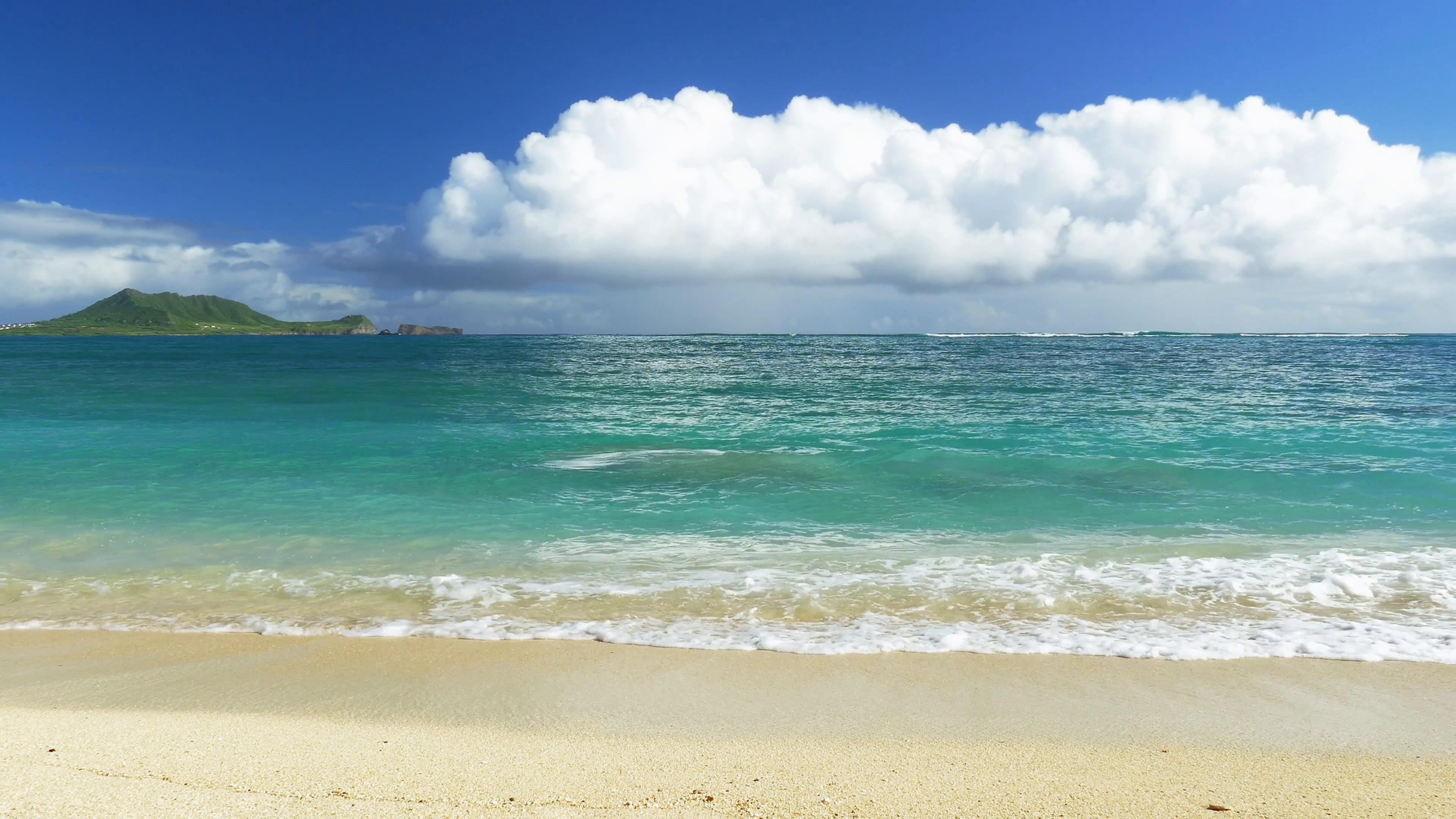 vector library stock Hawaii png hd images. Beach transparent hawaiian