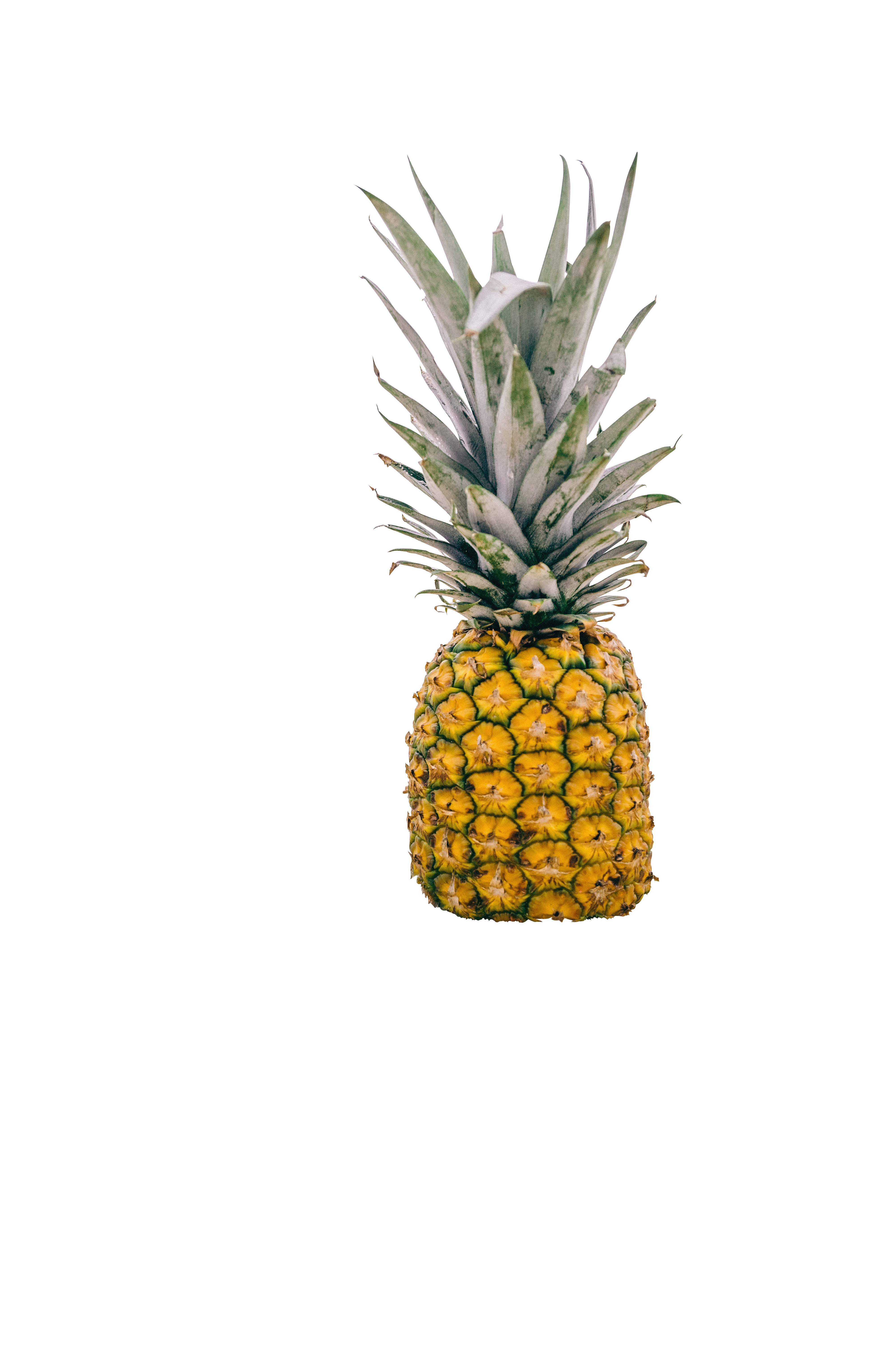 clip art freeuse Beach transparent pineapple. Battle day at the