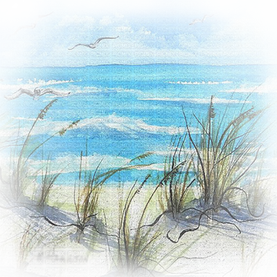 png transparent Beach transparent sea. Soave background summer grass