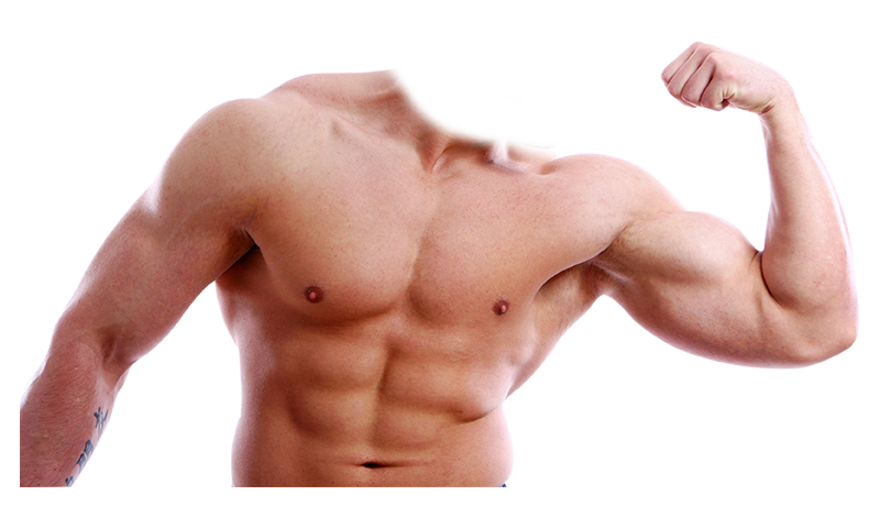 clip art freeuse Body Builder Photo Suit App Ranking and Store Data