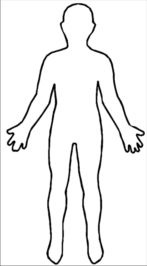 image freeuse human body outline template