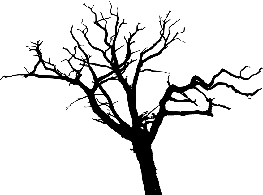 svg free download simple bare tree silhouette png