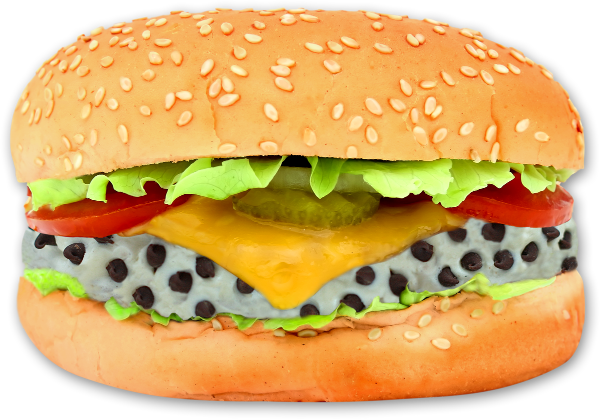 vector black and white stock Transparent burger. Png images free download.