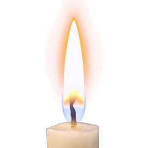 svg download transparent candle tumblr #116621139