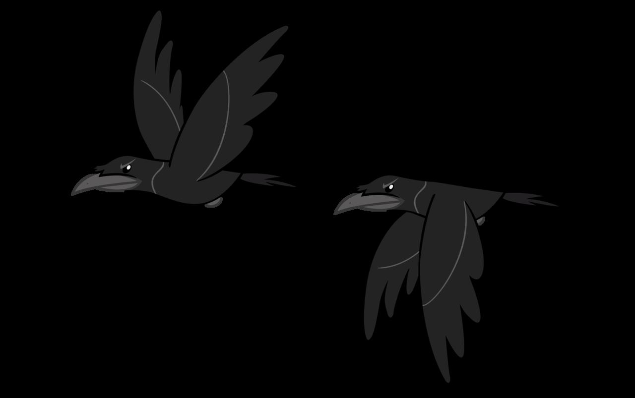 freeuse stock transparent crow editing #105505308