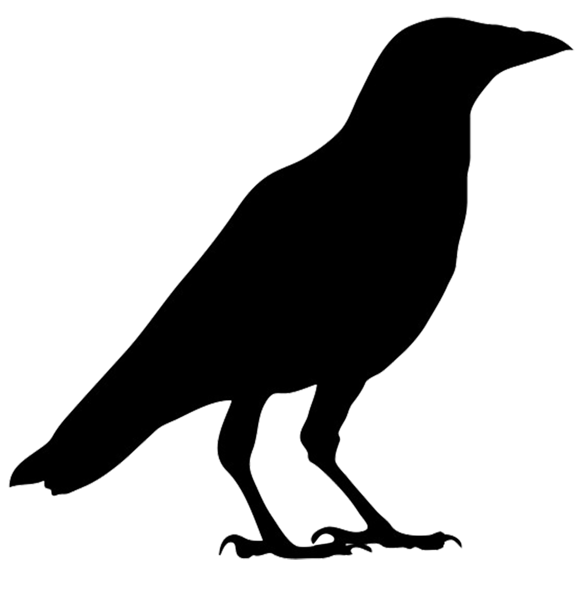 banner freeuse transparent crow spooky #105506872