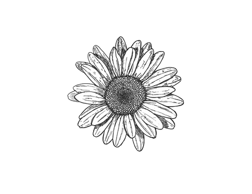 clipart freeuse black and white flowers tumblr transparent