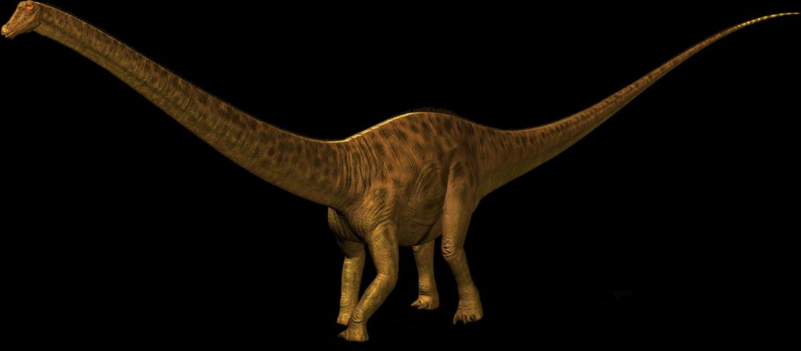 clipart download Diplodocus