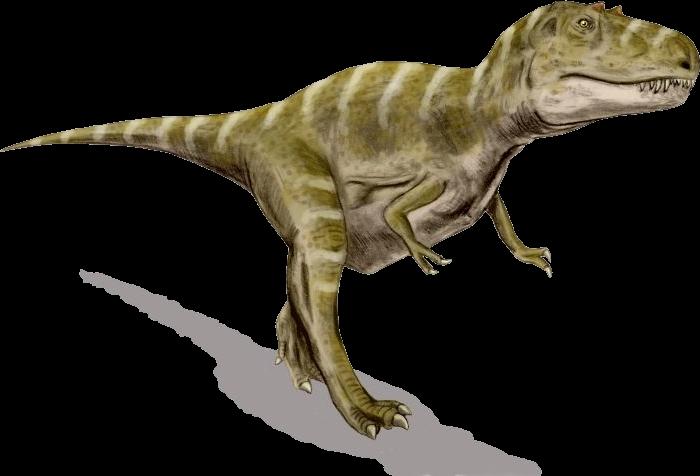 vector royalty free library dinosaur transparent gorgosaurus #111380250