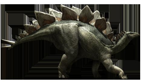 image free stock Stegosaurus