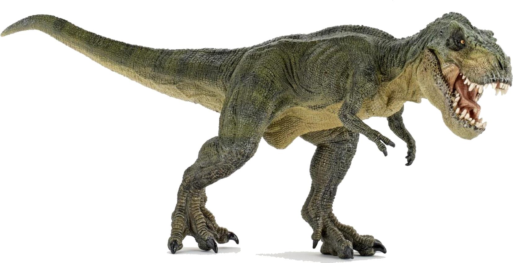 graphic transparent stock T Rex Dinosaurs PNG Transparent T Rex Dinosaurs