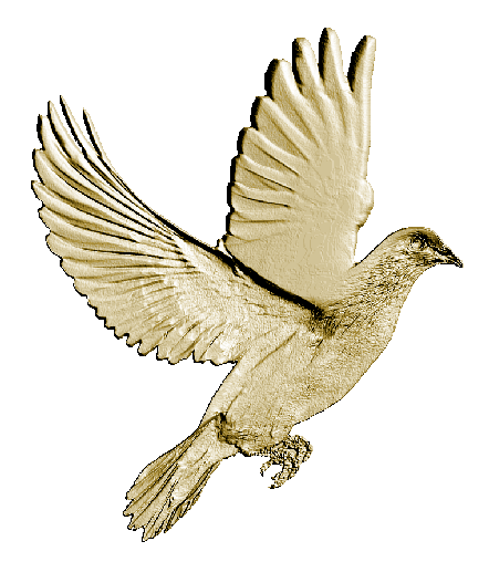 clipart free download golden dove