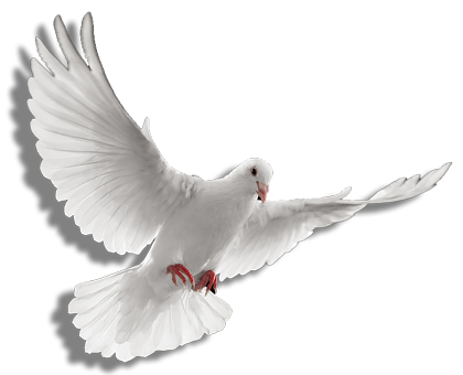 graphic transparent stock PNG Holy Spirit Transparent Holy Spirit