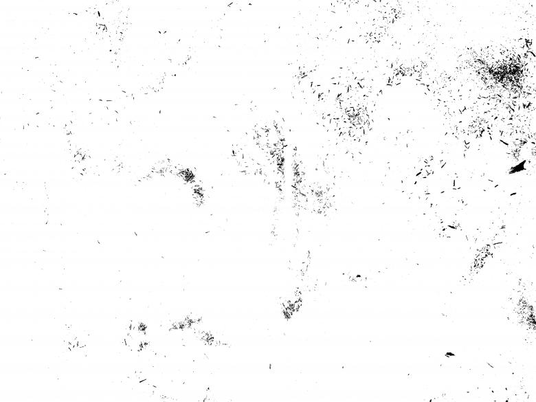 picture library stock Transparent dust. Texture free stock photo.