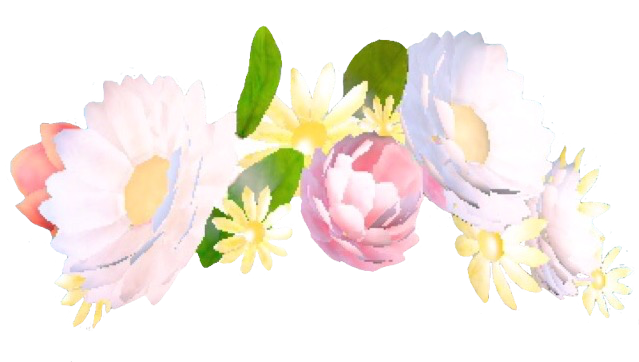vector freeuse stock Snapchat Flower Crown Like Or Reblog If Using x