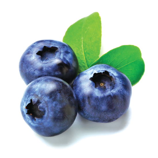 clip art download Products. Transparent fruit blueberry