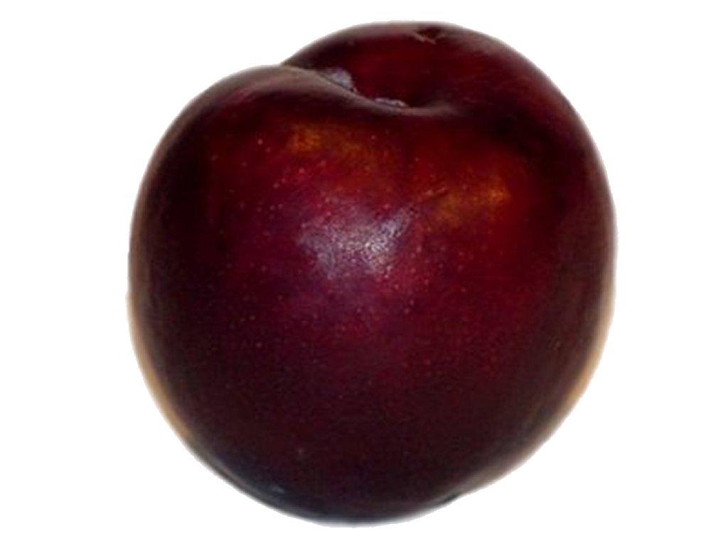 freeuse Fruit transparent plum. Kuala lumpur food music