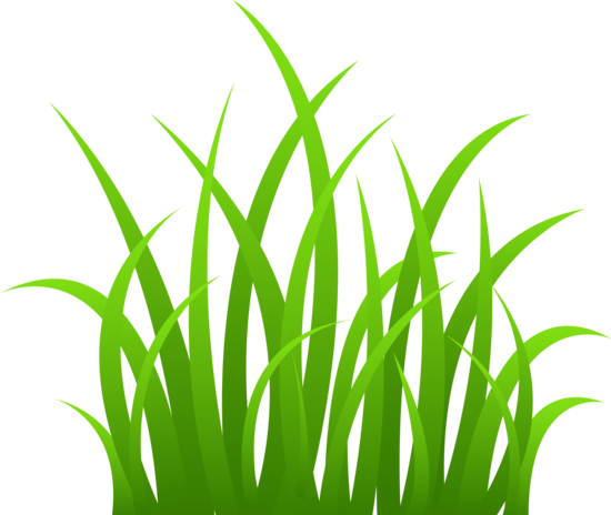 graphic transparent stock Grass Clip Art