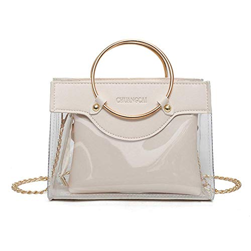 svg library stock Transparent handbag. Clear purse in tote