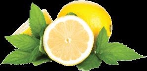 png royalty free download Transparent lemon mint. Mazaya kg with premium