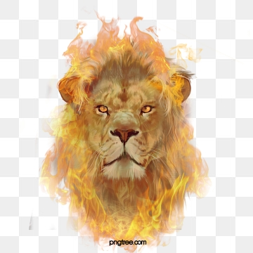 clip black and white stock Png images download resources. Transparent lion danger