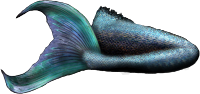 png royalty free download Mermaid Tail PNG Transparent Professional Images