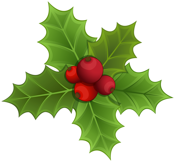 graphic stock Mistletoe PNG Clipart Image
