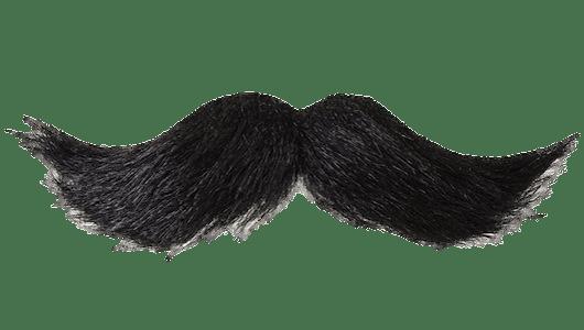 clip art stock Transparent moustache. Mustache black png stickpng.