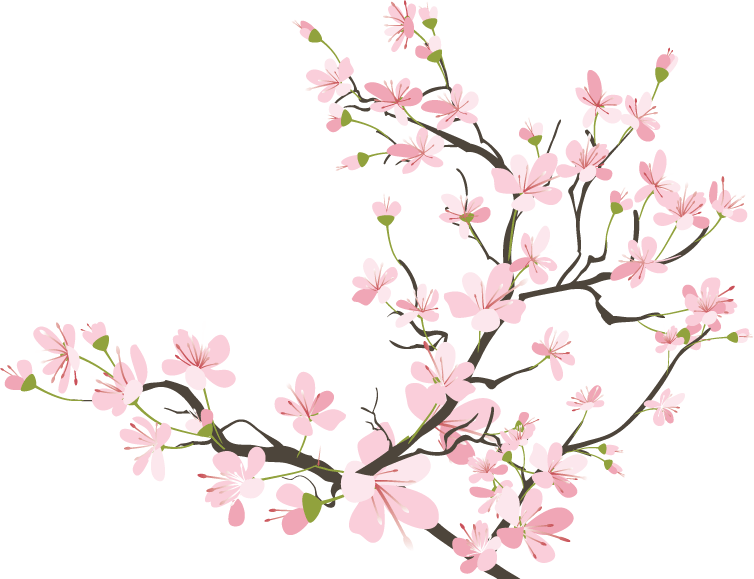 vector library library drawing bird cherry blossom #111576745