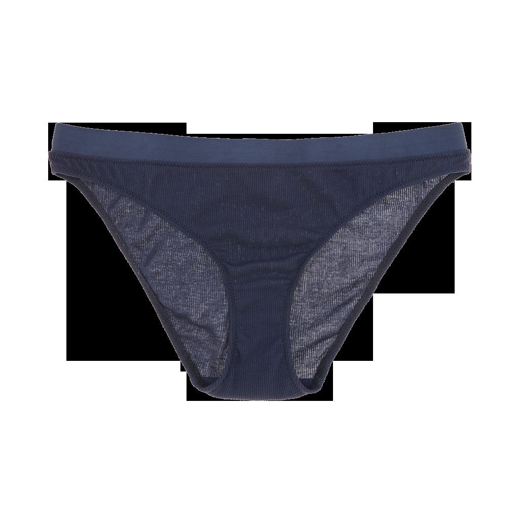 vector free download Araks lingerie swimwear sleepwear. Transparent panty micro