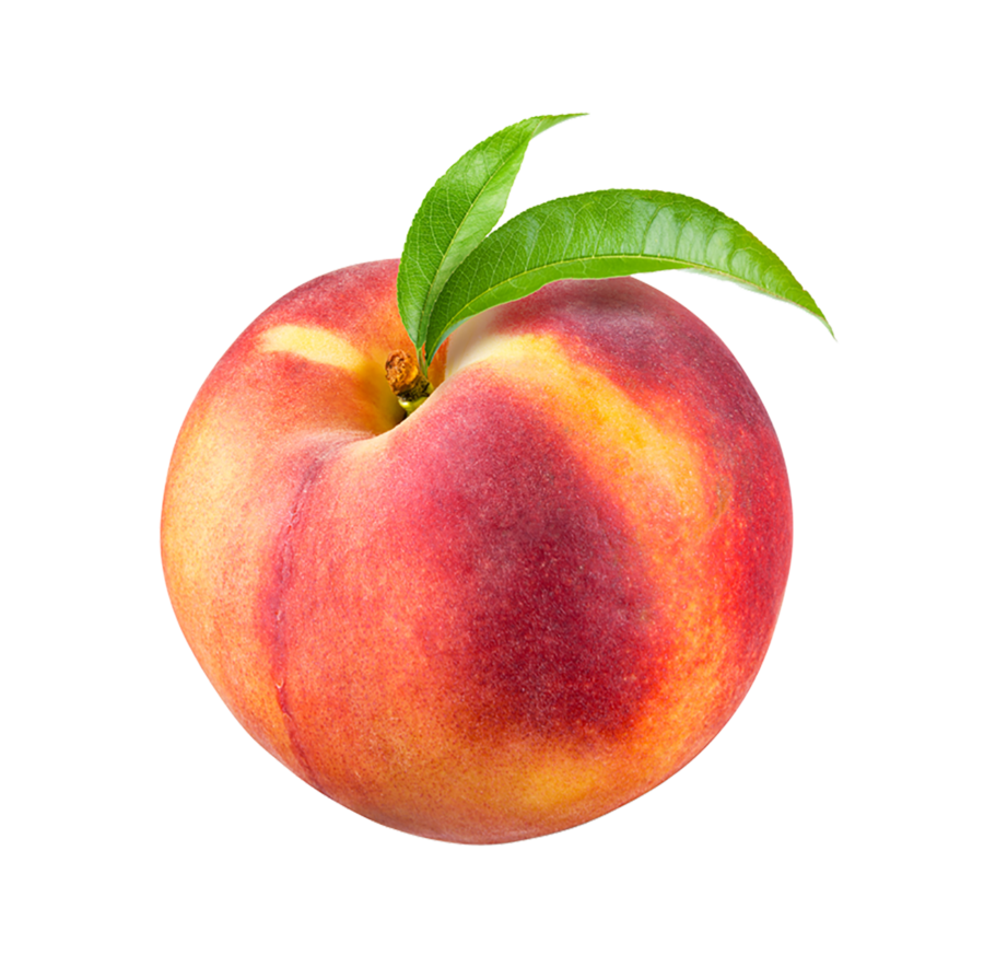 svg free download Transparent peach. Ripe on a background