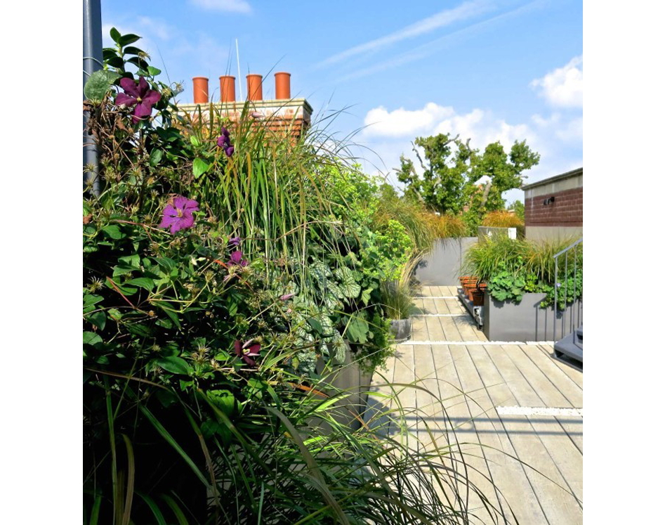 jpg freeuse download Transparent roof terrace. Kent jo thompson .