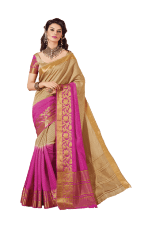 picture library Sarees women designer saree. Transparent saris.
