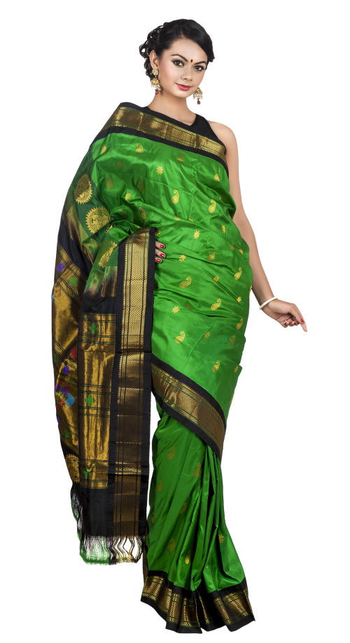 picture royalty free Wedding Saree PNG Transparent Image