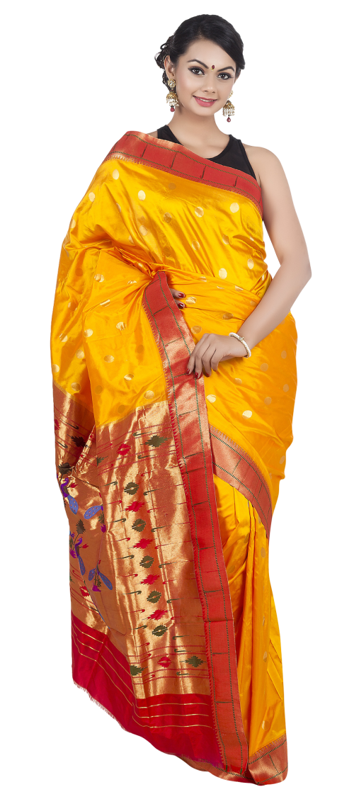 picture royalty free library Wedding Saree PNG Transparent Image