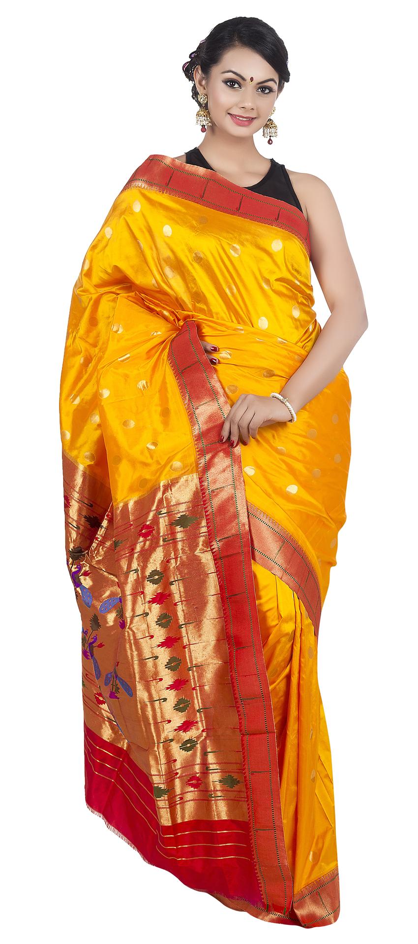 transparent Wedding Saree PNG Transparent Image
