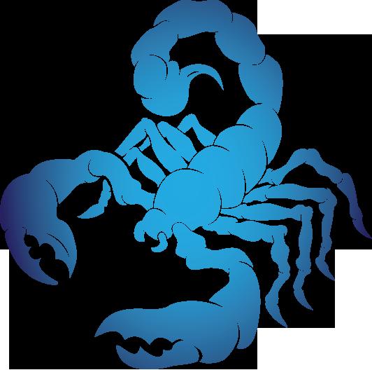 jpg royalty free Scorpio