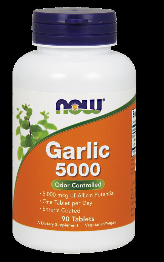 png library stock Garlic