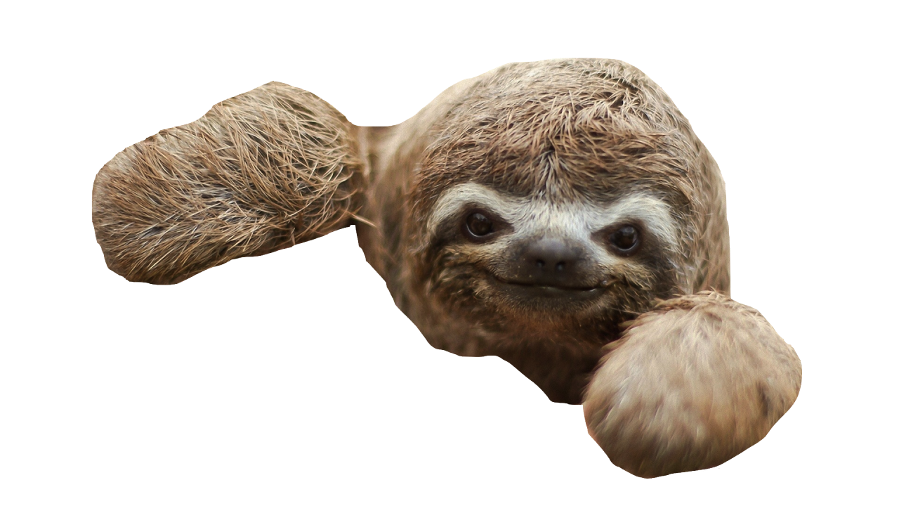 clip freeuse stock Sloth PNG Transparent Sloth