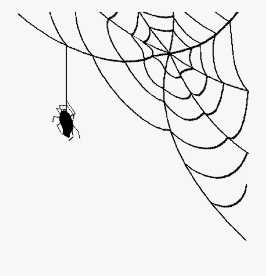 picture free library Png Transparent Download Spiders Clipart Clear Background